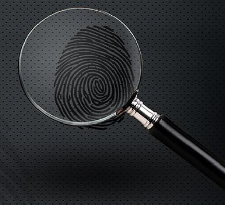 λογότυπο detective pelekasis
